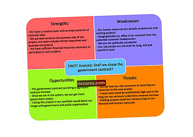Quali sono i punti di forza e di debolezza di uno stile di leadership professionale all'interno di un'organizzazione?