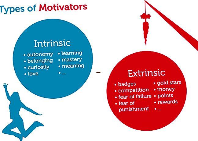 Fattori motivazionali estrinseci